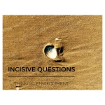 Seashell in sand, representing the Thinking Environment component of Incisive Questions