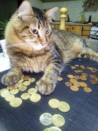 This is an image of a tabby cat protectively hoarding gold and silver coins.